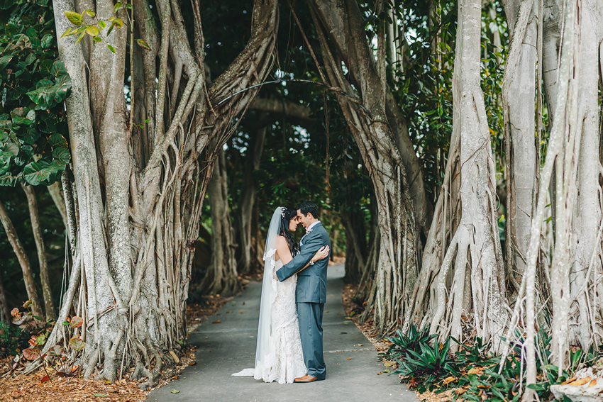 Romantic bride & groom under the banyon trees at Marie Selby Gardens in Florida