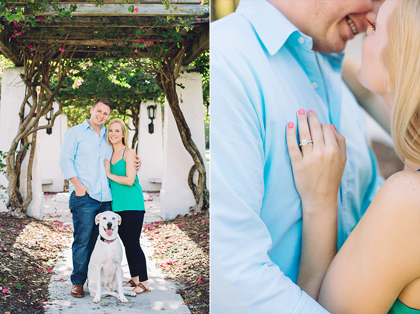 Puppy engagement session in St. Pete, Florida