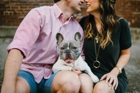 Cute Frenchie puppy at engagement session outside downtown tampa